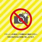 黄色背景のフラッシュ撮影禁止の注意書きテンプレート