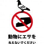 鳩などの動物へのエサやりを注意する張り紙テンプレート