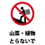 山菜・植物の採取を禁止する注意貼り紙テンプレート