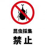 昆虫採集禁止の注意貼り紙テンプレート