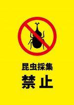 山等での昆虫採集を禁止する注意貼り紙テンプレート