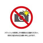 フラッシュ撮影禁止の注意書きテンプレート