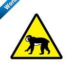 猿出没注意標識アイコンの貼り紙ワードテンプレート